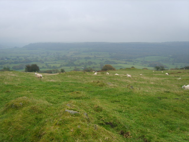 On Raven's Barrow - geograph.org.uk - 1545761