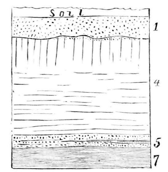 restepolsri Layers Of Soil – Soil Layers Worksheet