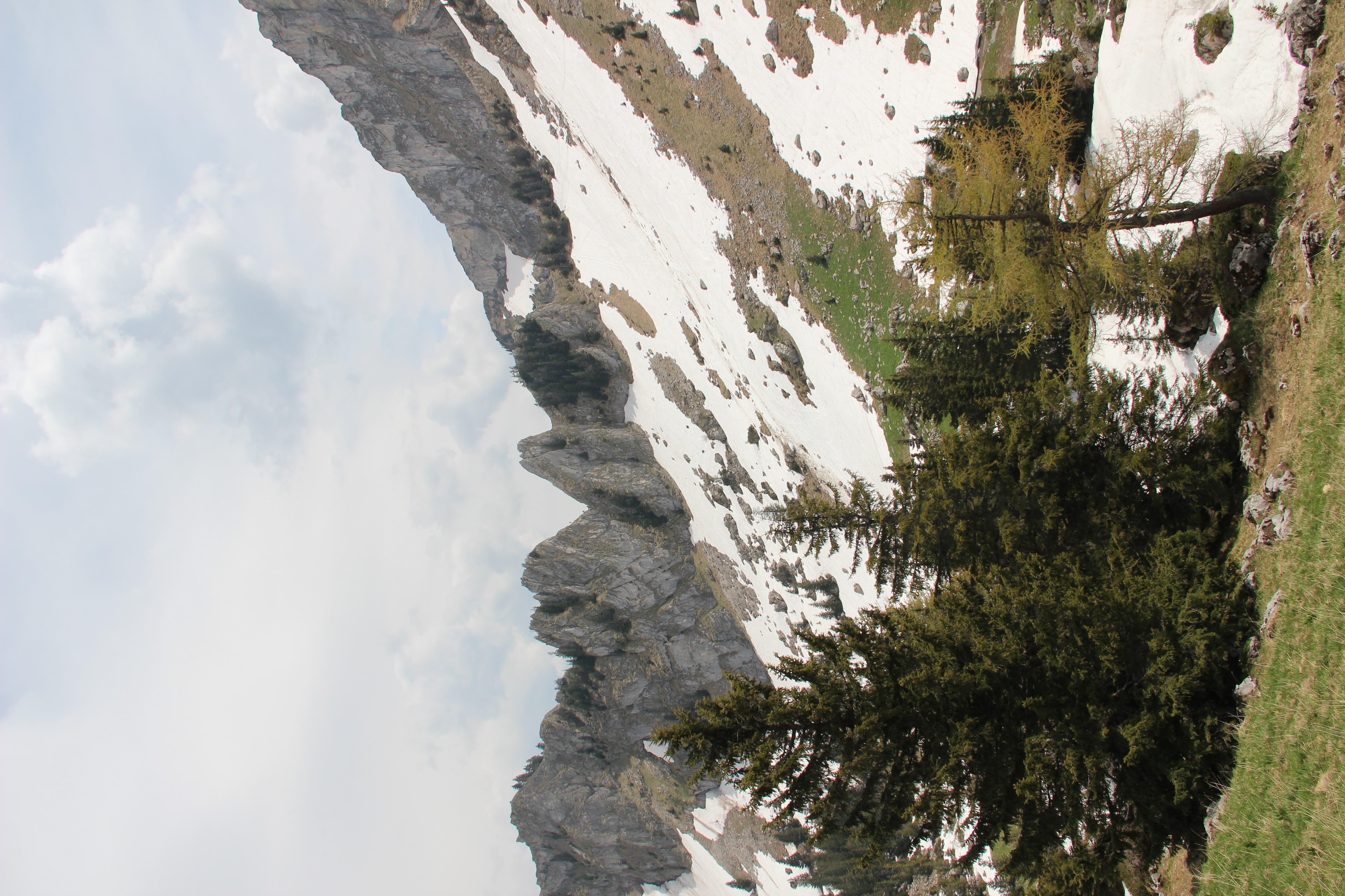 File:Panoramic view near the Station de Jaman - panoramio (9).jpg