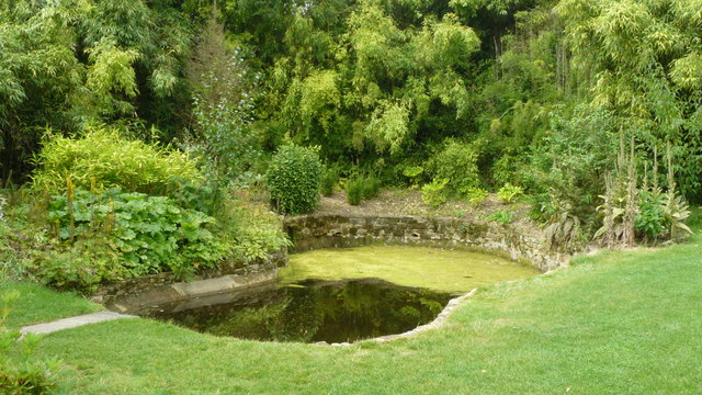Pond at Standen House - geograph.org.uk - 1192785