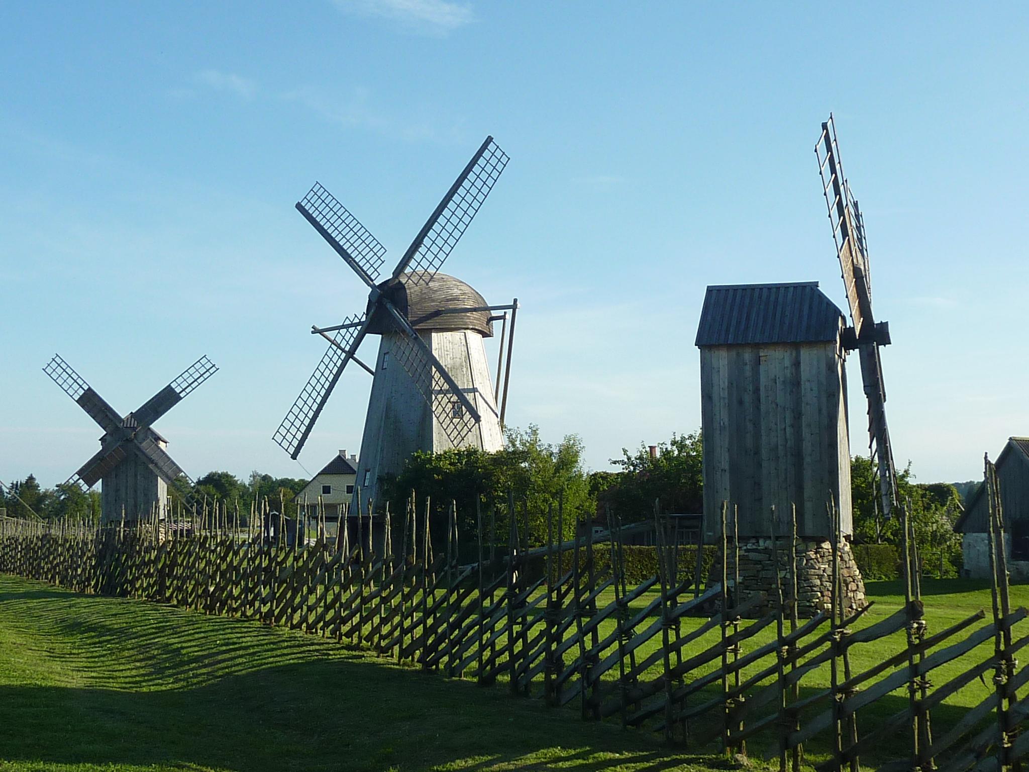 File:Saaremaa Angla Windmills Farm - Angla Tedre Talu Tuuleveski 20896 ...
