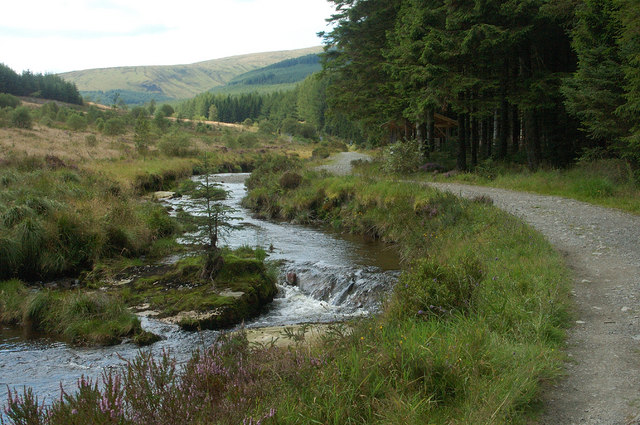 Severn Way in Hafren Forest - geograph.org.uk - 772159