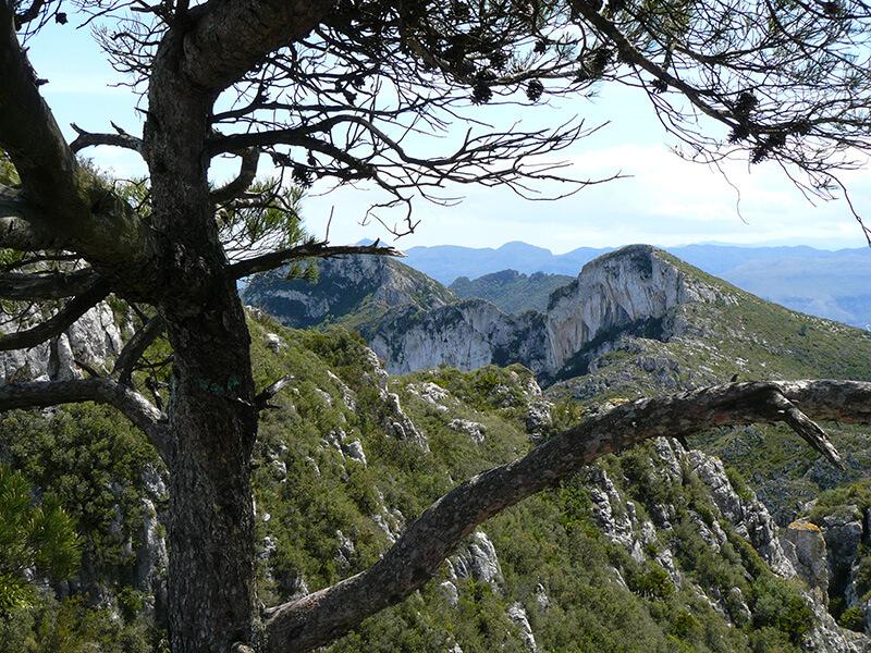 Depiction of Sierra de Corbera