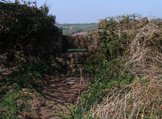Stone stile, Calke Park - geograph.org.uk - 401867