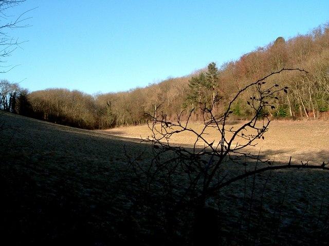 Sweeping fields near Wigginton - geograph.org.uk - 130816