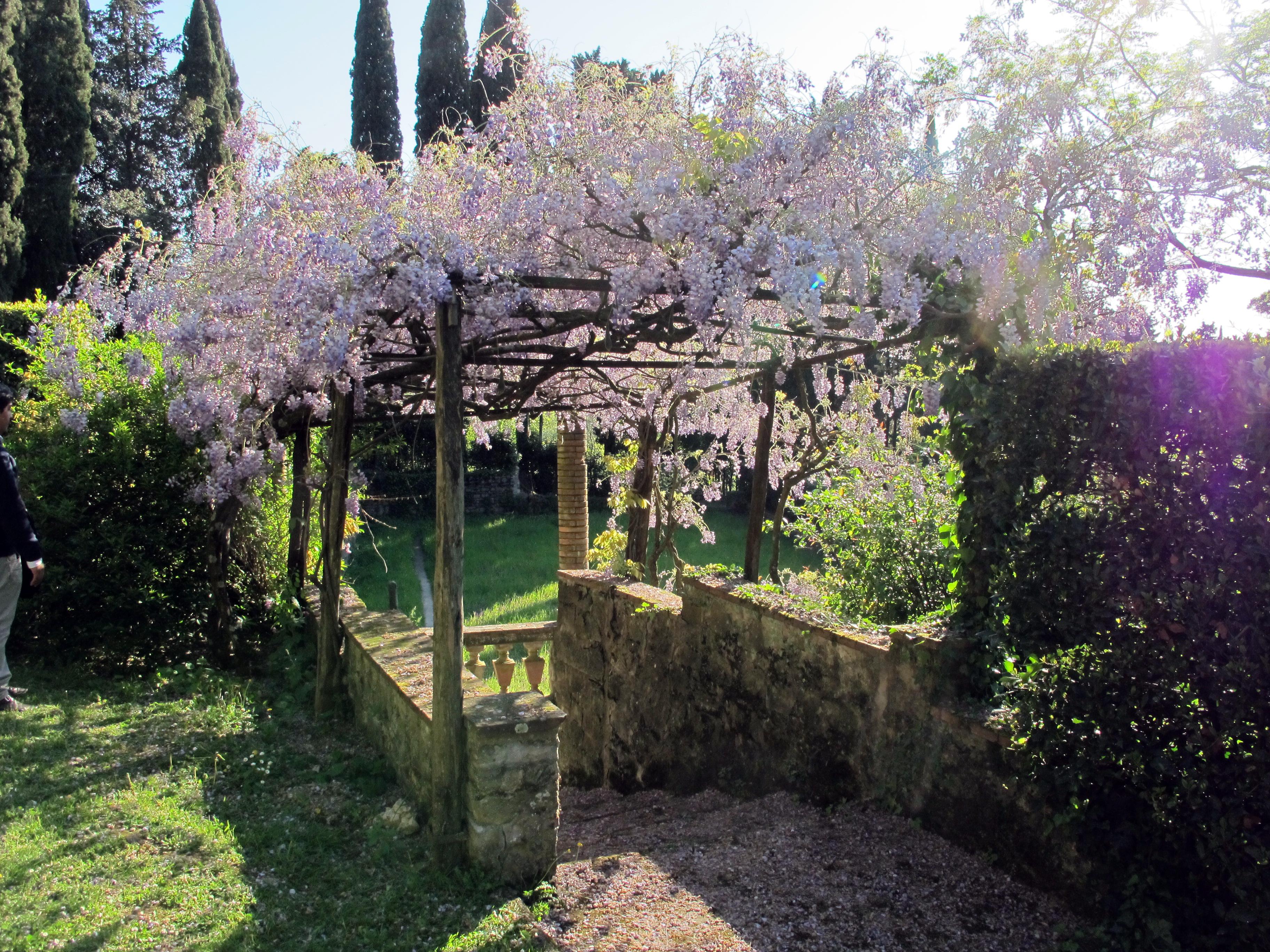 Villa Con Pisicna Parco Del Conero
