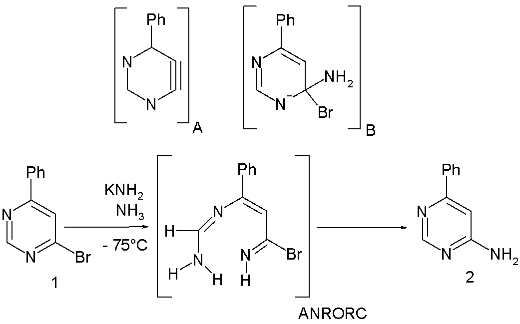 anrorc mechanism