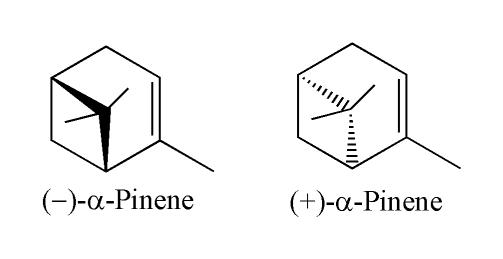 https://upload.wikimedia.org/wikipedia/commons/d/d7/AlphaPinene.png