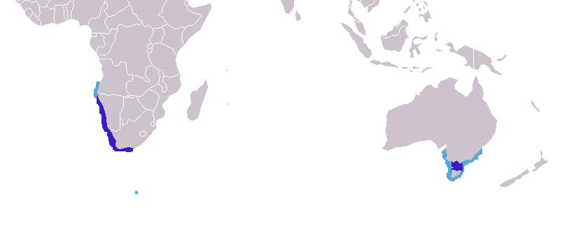 Distribución de A. pusillus[citarequerida] Azul oscuro: zona de cría
