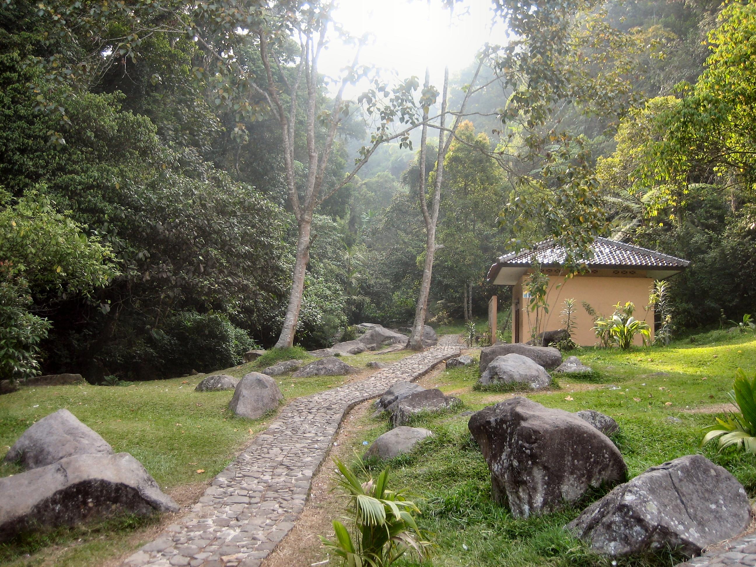 Kebun Raya Cibodas Wikipedia Bahasa Indonesia
