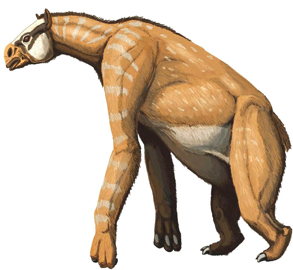 Resultado de imagen de chalicotherium