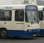 Comber Bus Depot - geograph.org.uk - 137079 crop 2.jpg