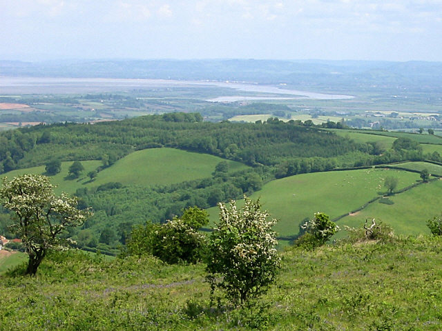Cothelstone Hill - geograph.org.uk - 983271