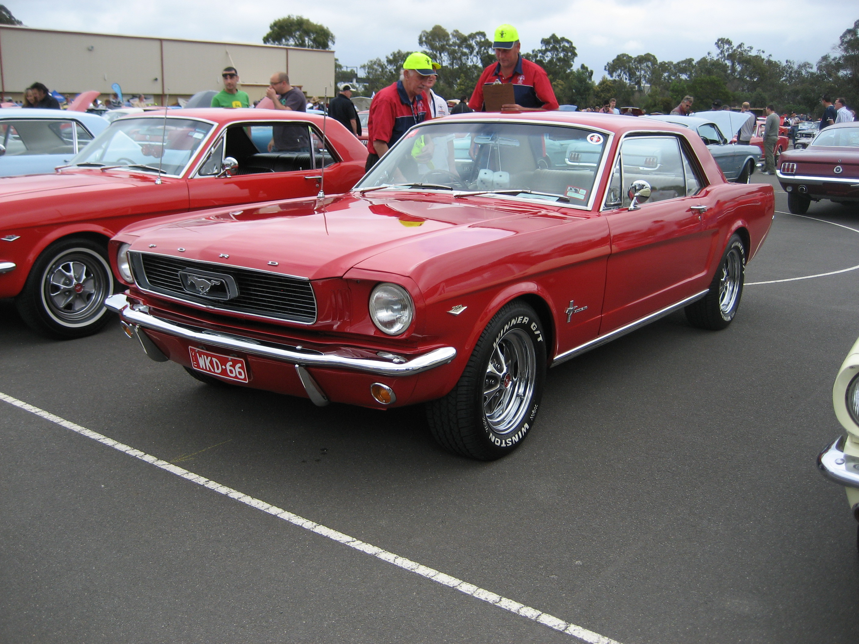 File Ford Mustang Hardtop 1966 2 Jpg Wikimedia Commons