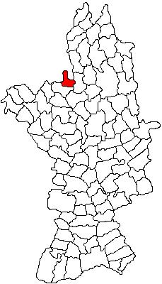 Vị trí của Gradinari