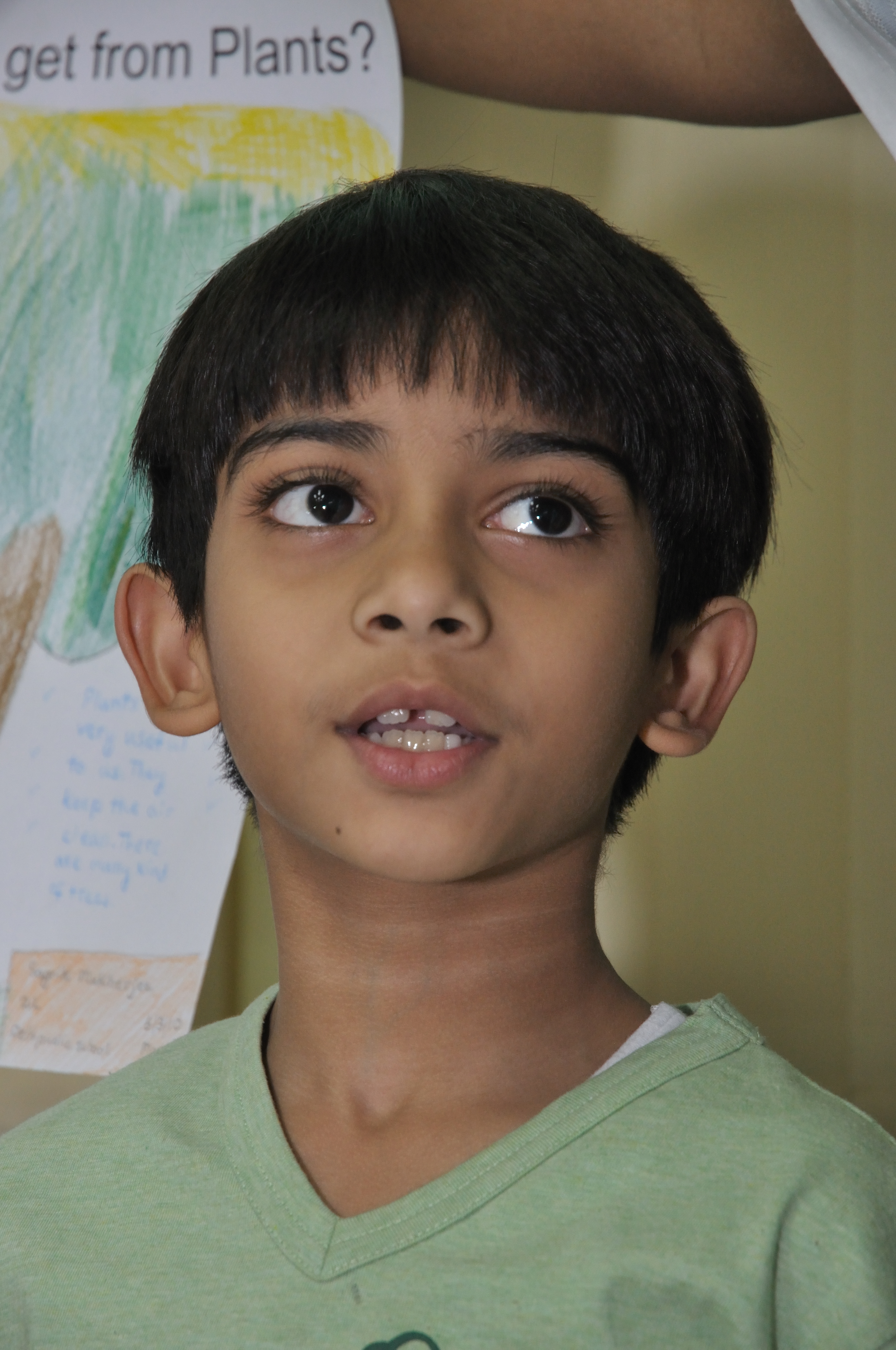 Description Indian Boy Child