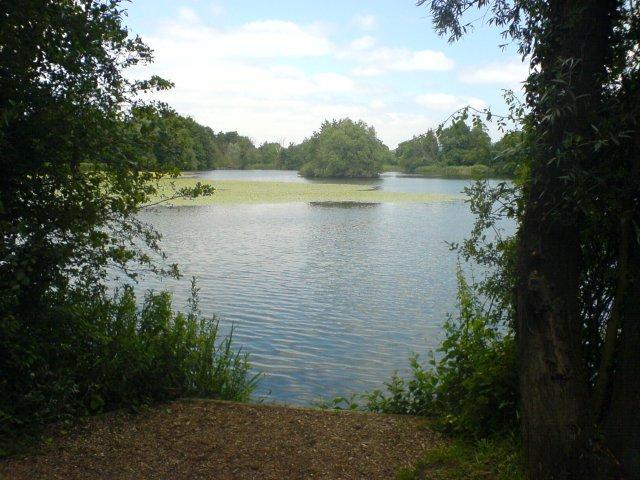 Leybourne Lake - geograph.org.uk - 21567