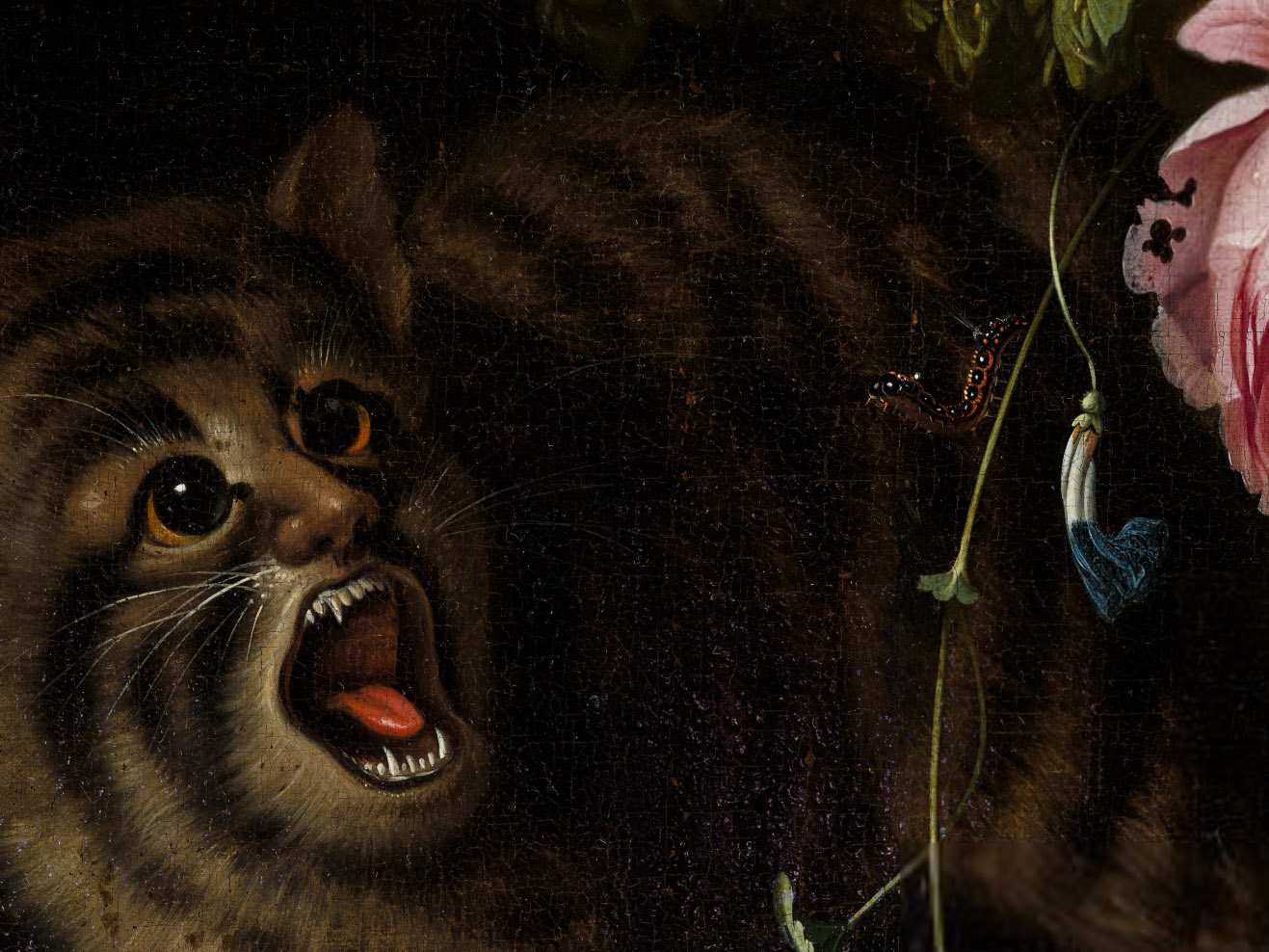 Filemignon Chat Detailjpg Wikimedia Commons
