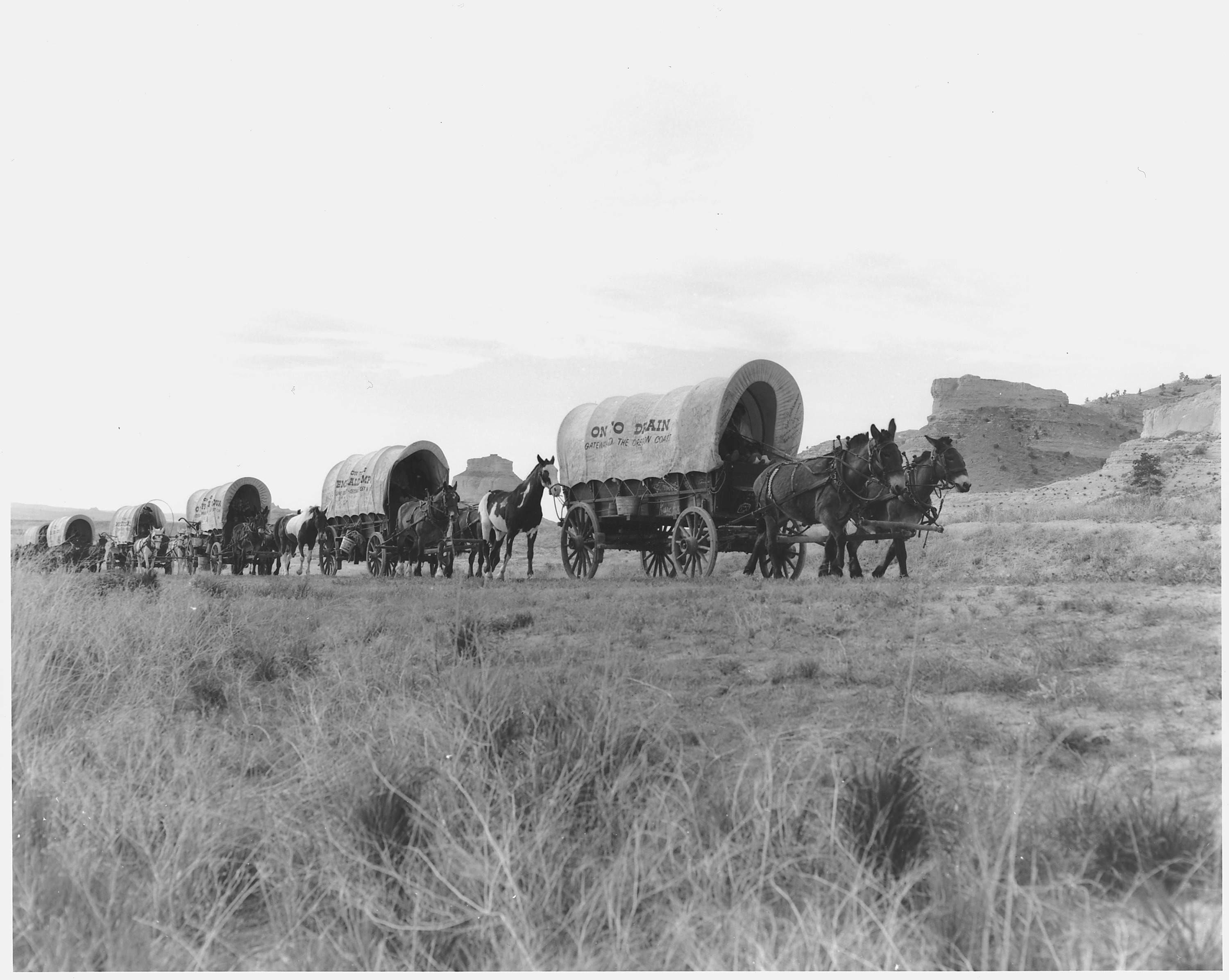 a hitory of the oregon trail The first major wagon train to the northwest departs from elm grove, missouri, on the oregon trailalthough us sovereignty over the oregon territory was not clearly.