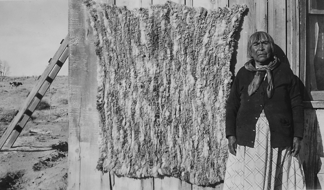 File Photographs With Captions Of Coyote Pelts And