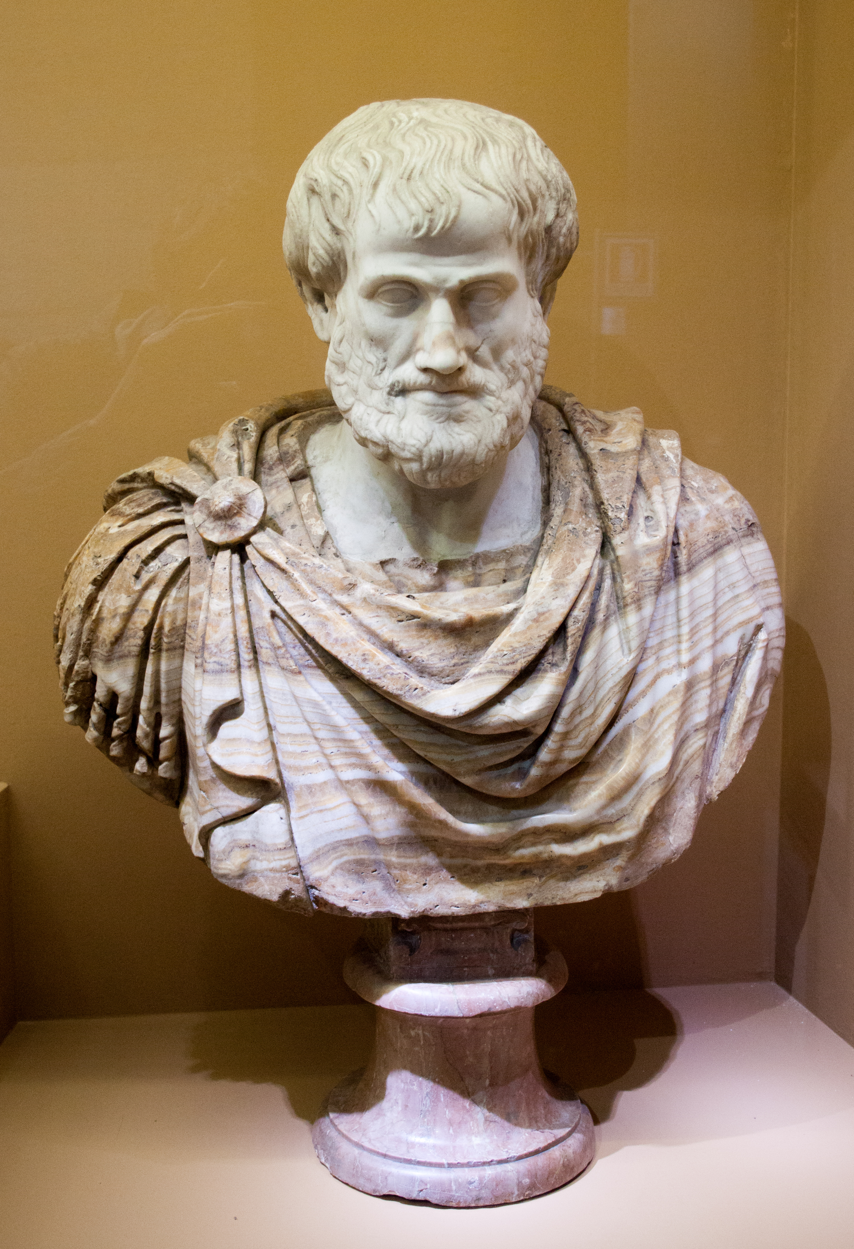 summary the rational life aristotle References aristotle: a brief biography a short yet informative survey of his life  philosophy talk: aristotle listen to this excellent radio program and take notes.