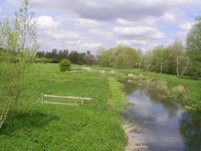 River Chelmer - geograph.org.uk - 411097