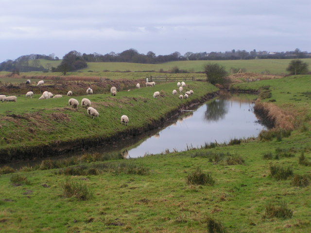 Royal Military Canal near Wincelsea - geograph.org.uk - 731852