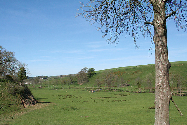 South Molton, Mole valley - geograph.org.uk - 406304