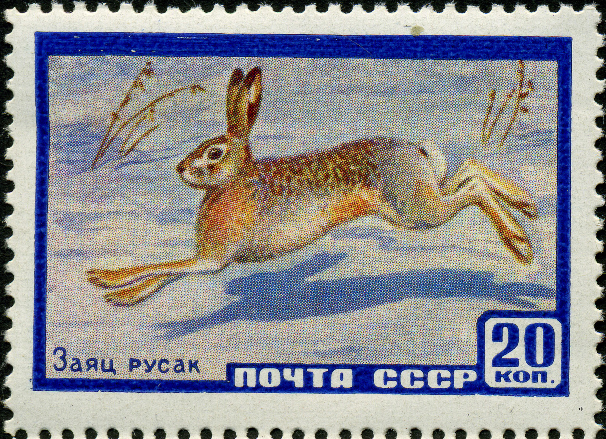 File:The Soviet Union 1960 CPA 2403 stamp (European Hare).jpg