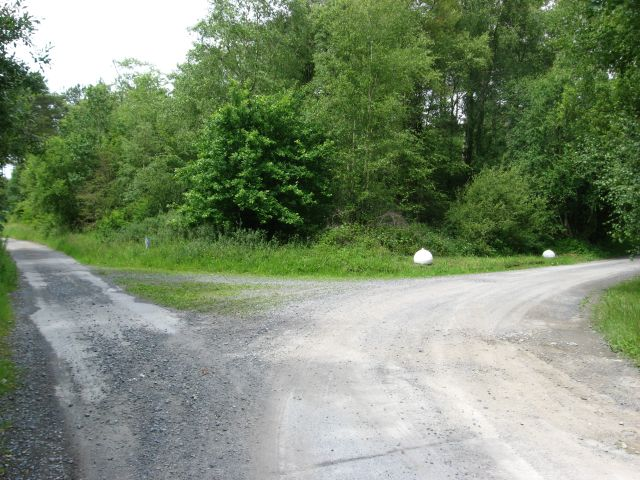 Track junction near the entrance to Pembrey Forest - geograph.org.uk - 853790