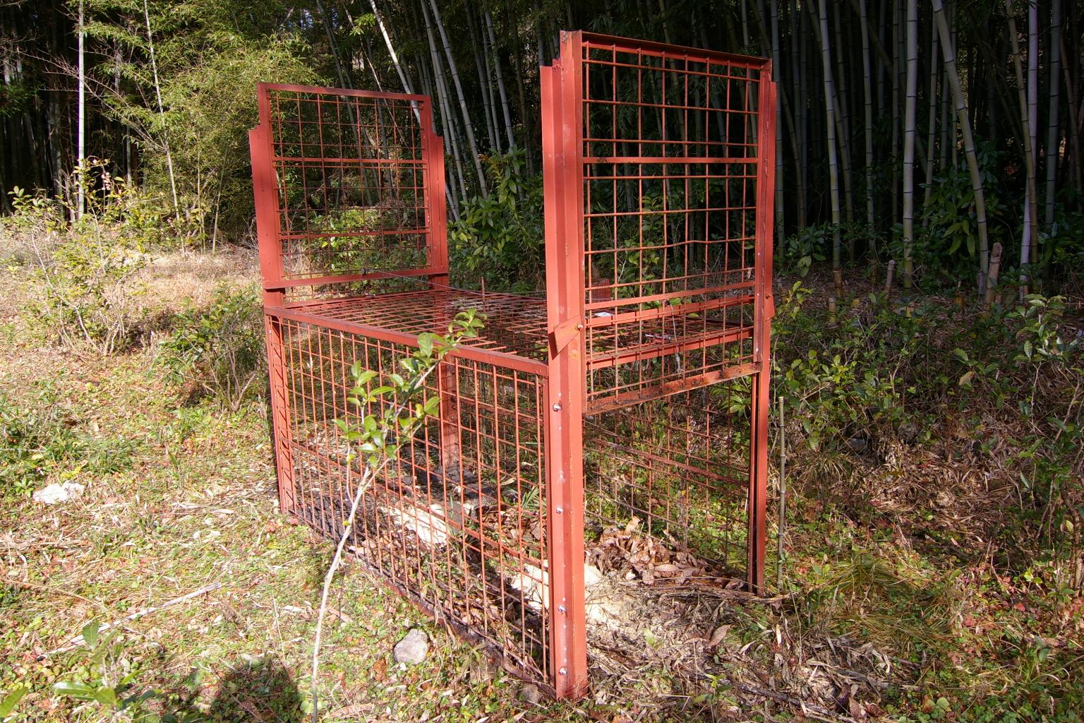 file trap for wild boar 01 jpg wikimedia commons