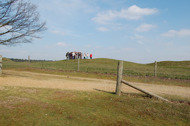Tumuli at Sutton Hoo - geograph.org.uk - 415756