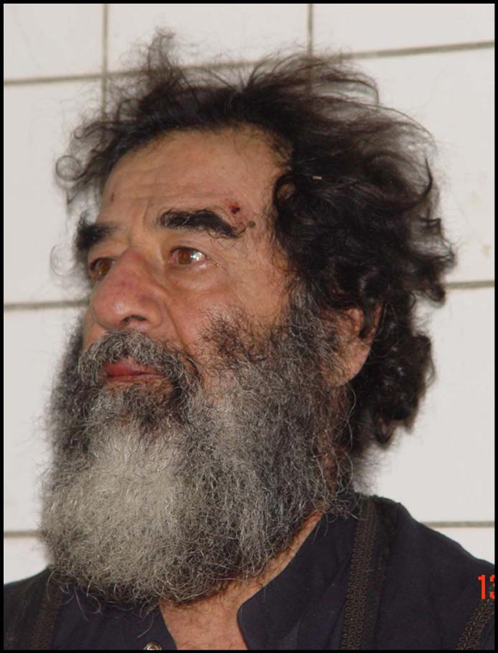 File:US Navy 031214-D-0000X-001 Former Iraqi leader Saddam ... Saddam Hussein