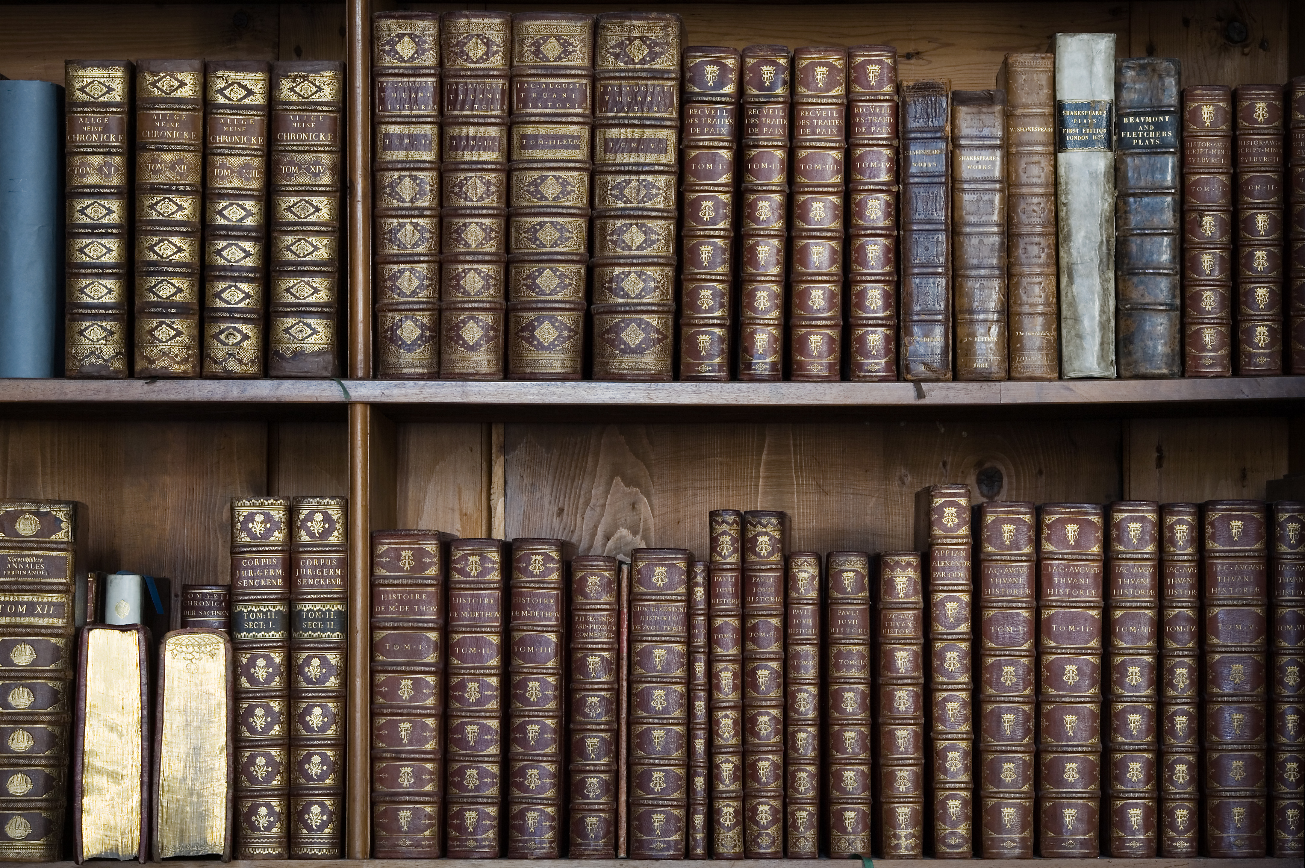 File Vienna Baroque Bookshelves Detail 6729 Jpg