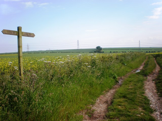 Wolds Way and High Hunsley Circuit route over the Wolds - geograph.org.uk - 1372073