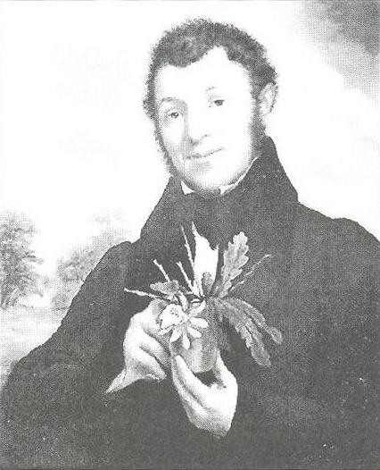 Depiction of Adrian Hardy Haworth