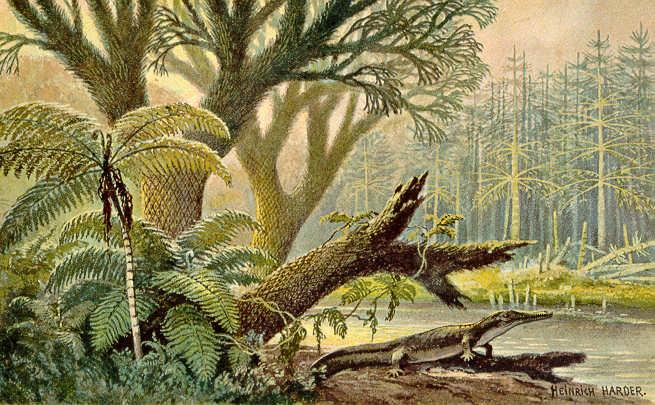 Archegosaurus
