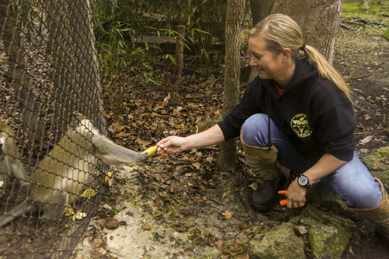 File:Aviation technicians volunteer, clean up Lynnwood Park Zoo