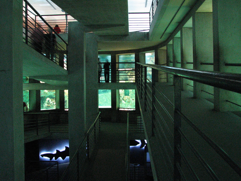 File Baltimore Aquarium Big Wikimedia Commons