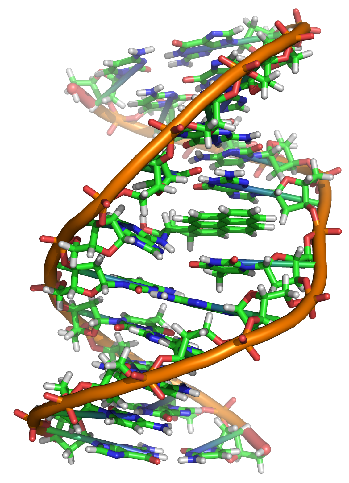 A covalent adduct between Xxxxy Syndrome