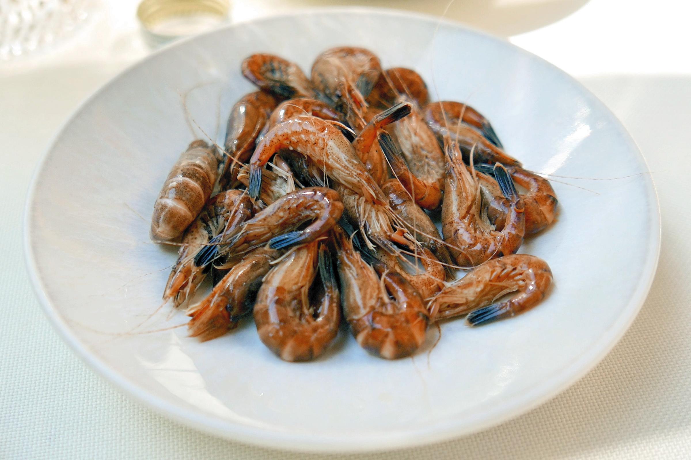 Nordseekrabbe (Lebensmittel) - Wikiwand