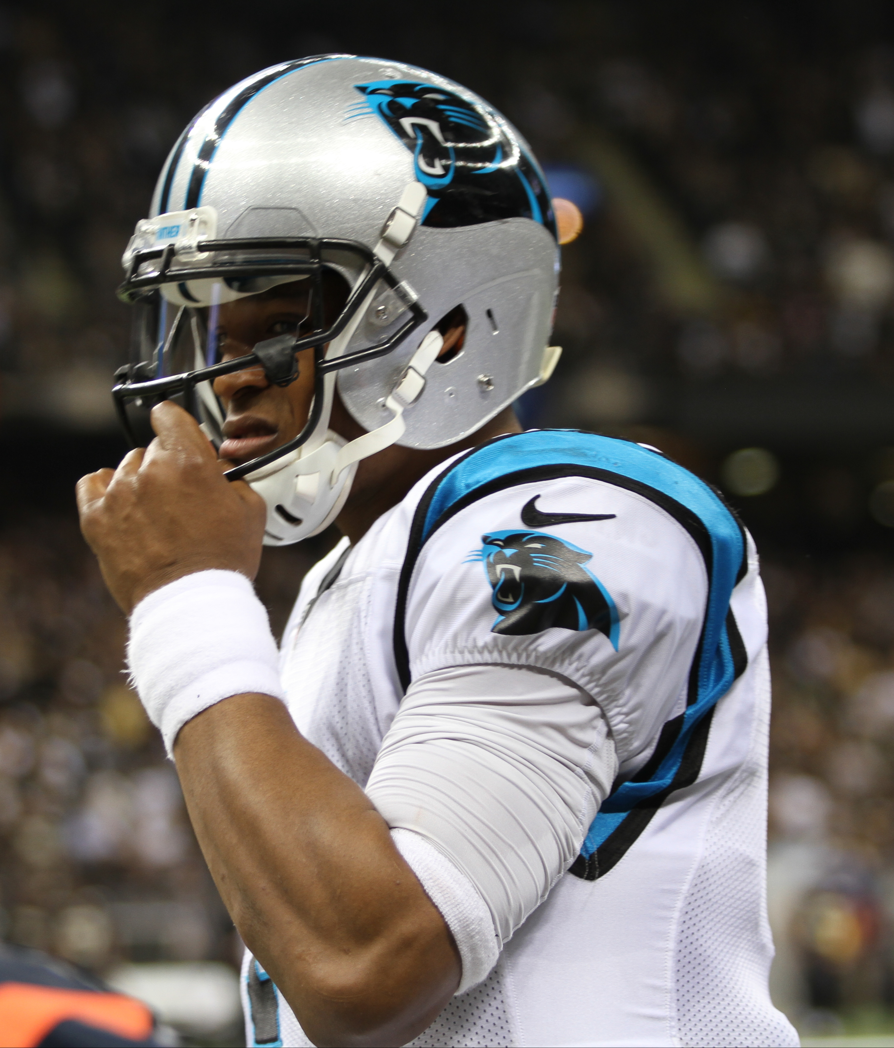 Saints Newton - jpg Vs File Commons Wikimedia cam 2015-12-06 Panthers