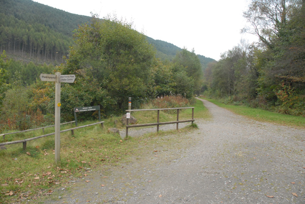 Cycle track in Afan Forest Park - geograph.org.uk - 576846