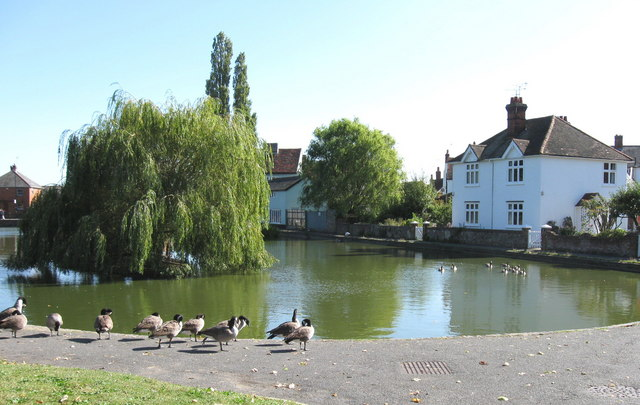 Doctors Pond, Great Dunmow, Essex. - geograph.org.uk - 1502625