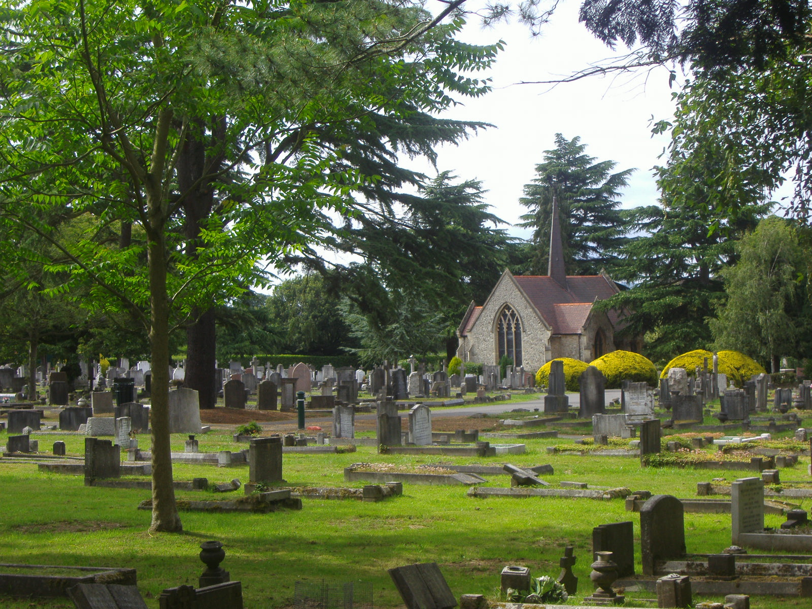Cemetery image from Wikidata