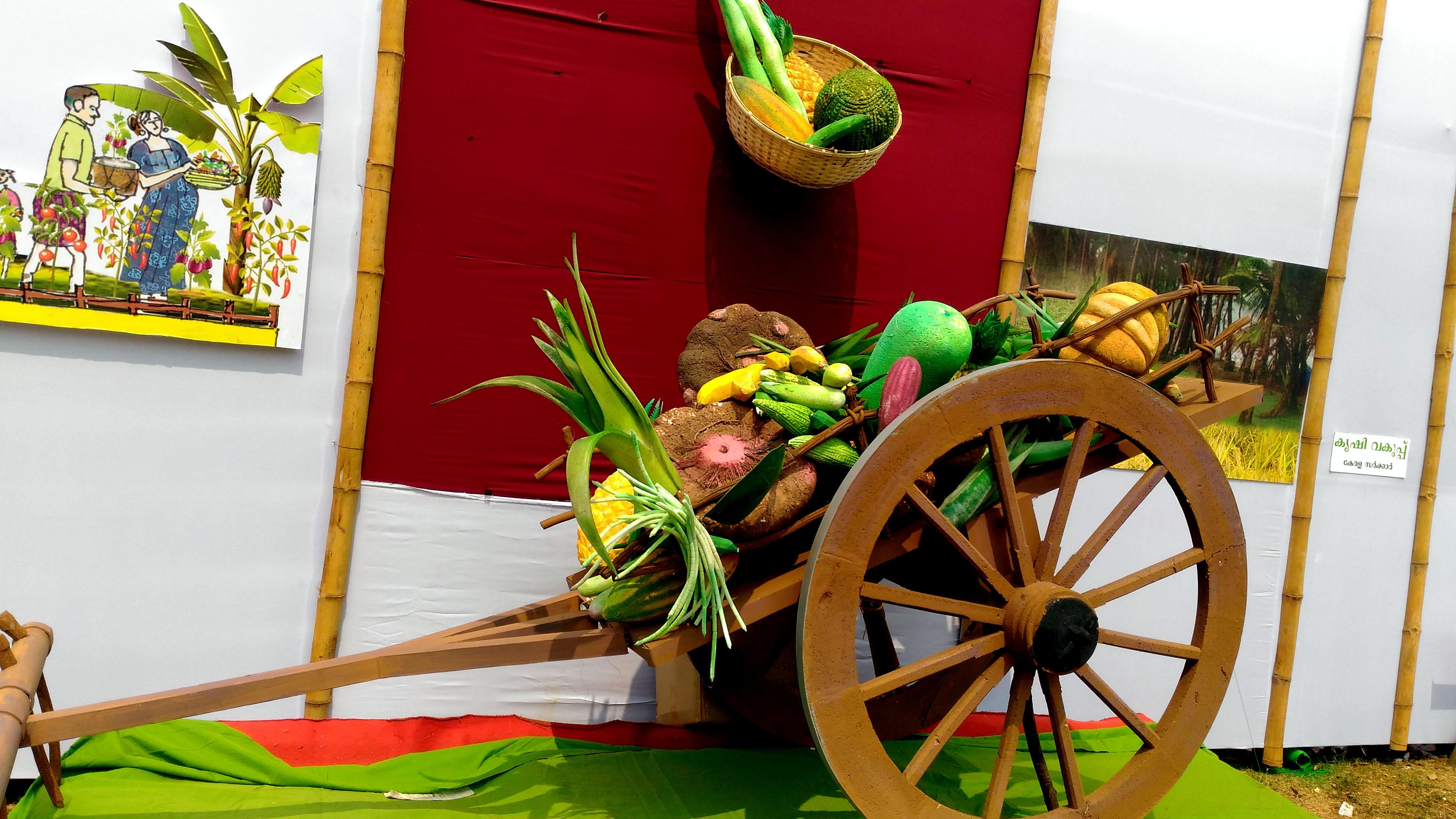 Kerala school kalolsavam 2018 Thrissur main stage farm information bureau kerala stall image