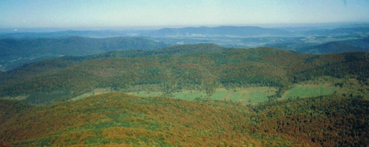 Widok z Połoniny Caryńskiej na Kosowiec
