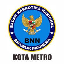 File Logo Bnn Kota Metro Jpg Wikimedia Commons