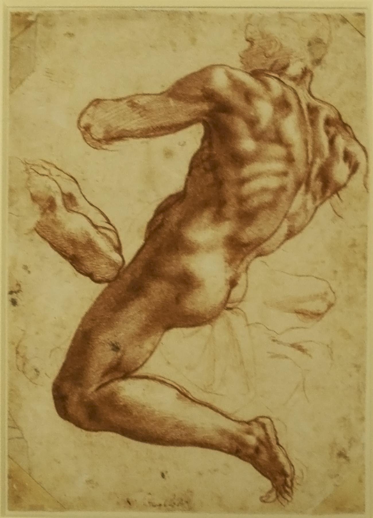 File:Michelangelo - Study of an Ignudo.jpg - Wikimedia Commons