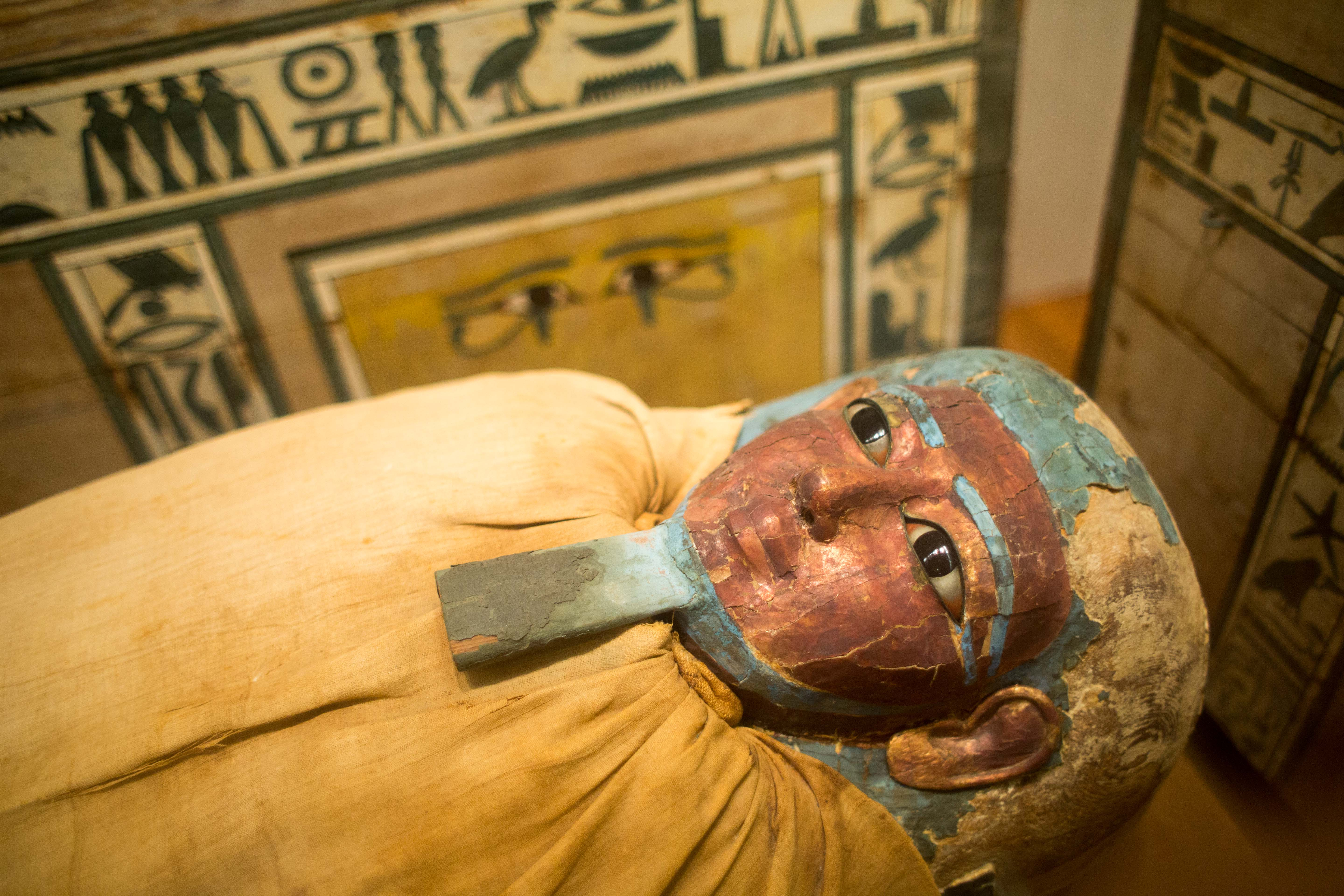 May 30, · The Metropolitan Museum of Art: Mummies! Rows and rows of them! - See 50, traveler reviews, 24, candid photos, and great deals for New York City, NY, at TripAdvisor.5/5.